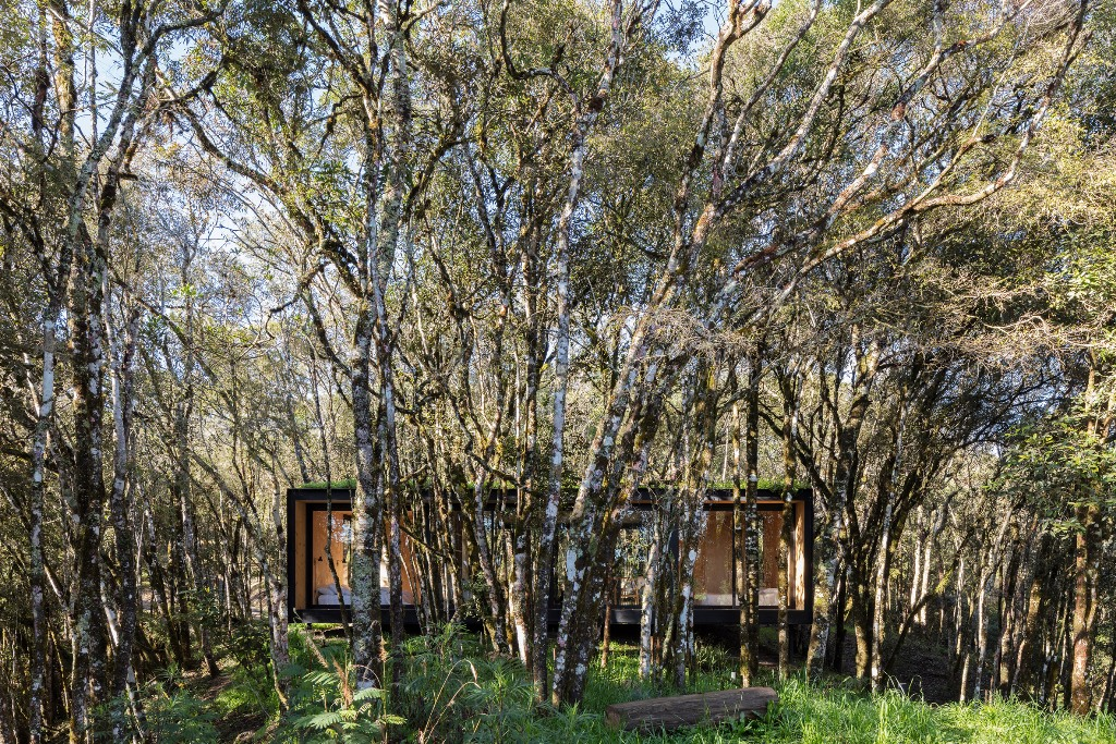 The cabin is clad with black panels and its roof is grassy to make standing out from the terrain minimal