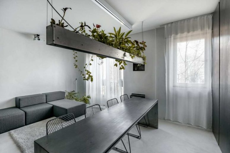The living space continues the space with a laconic geometric sofa and potted plants