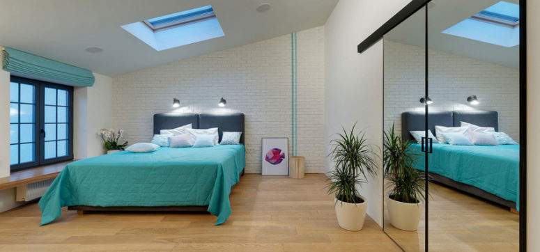 The master bedroom features a skylight, potted plants, a built-in storage unit with a mirror