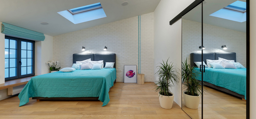 The master bedroom features a skylight, potted plants, a built in storage unit with a mirror