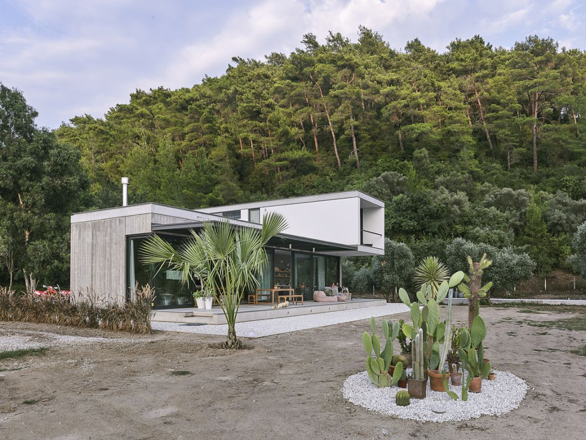 The landscaping matches the house, there are cacti and succulents plus a palm