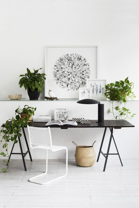 a whisy white home office with a black trestle desk and potted greeneyr to refresh it and make it look cooler