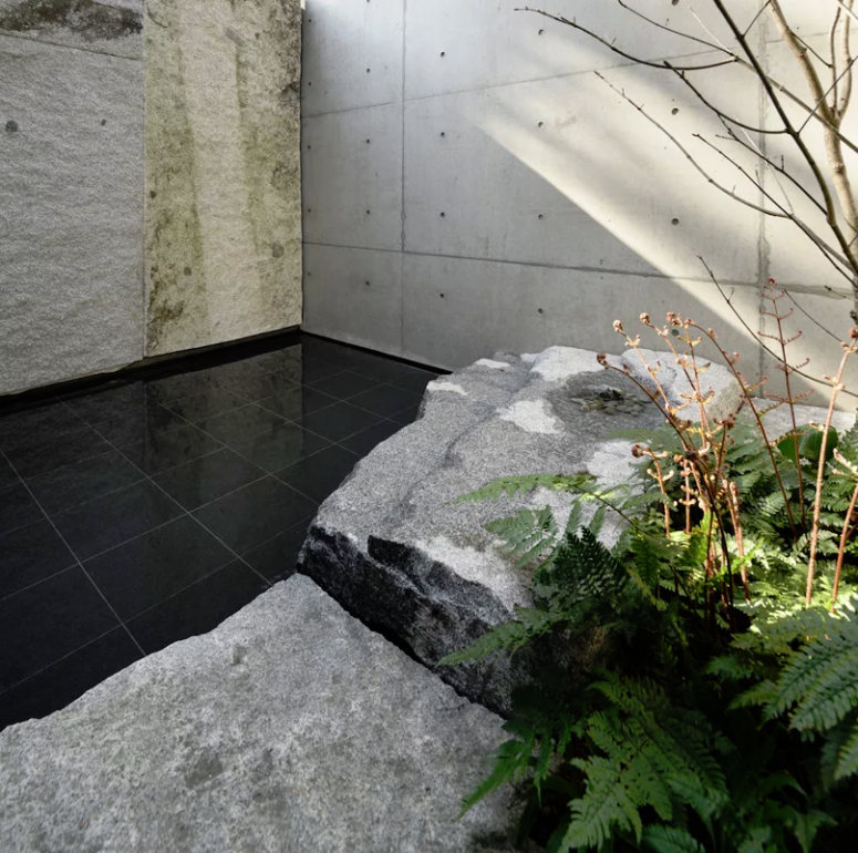 The inner patio is done with sleek black tiles, ferns, a tree and natural rocks that contrast the tiles very much