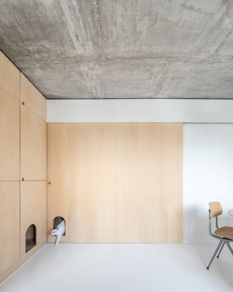 The plywood panels feature some holes for the cat to move comfortably wherever it wants