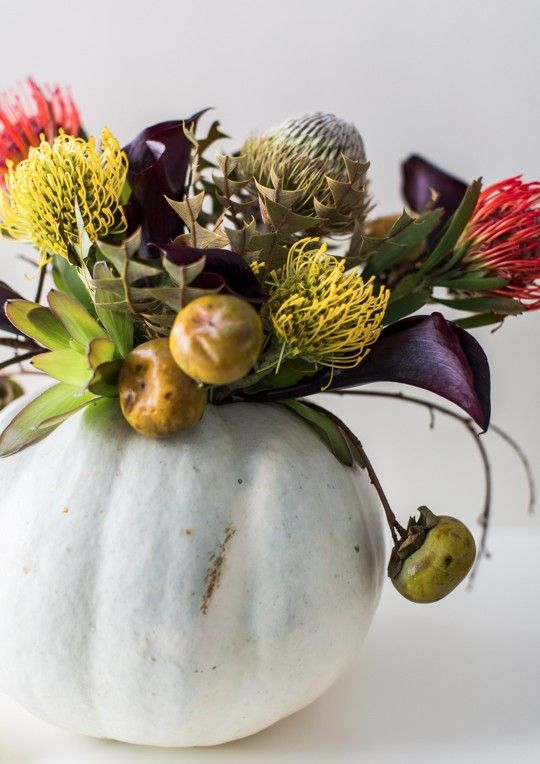 a chic Halloween centerpiece of a pale pumpkin, deep purple and red and yellow blooms, some fruits and a succulent