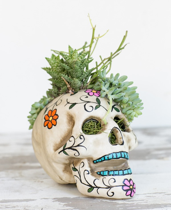 a sugar skull filled with grass and succulents is a cool and bright idea for a Day of The Dead party