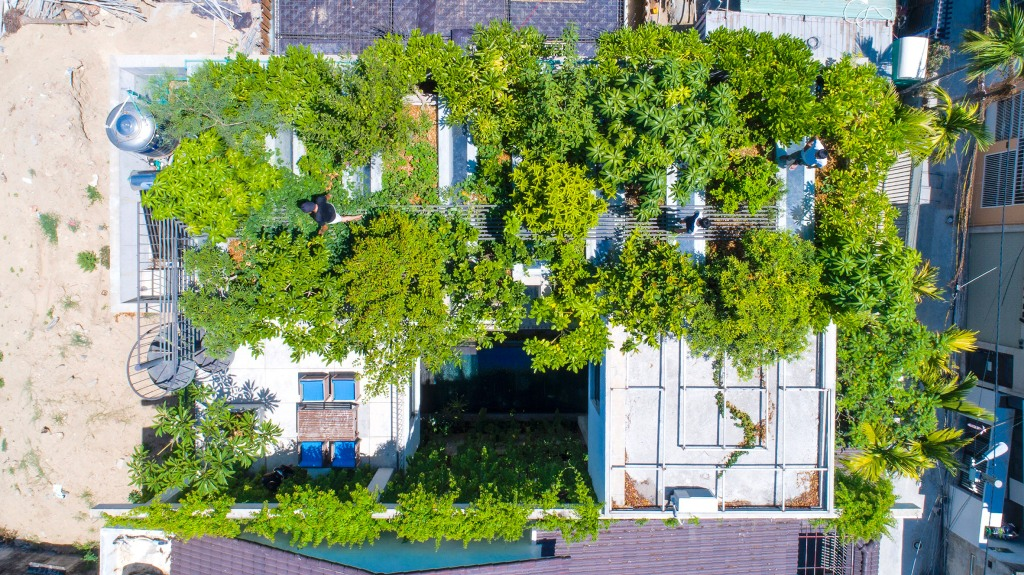 This contemporary home features fruit trees on the roof that are planted instead of greenery that was cut to build it