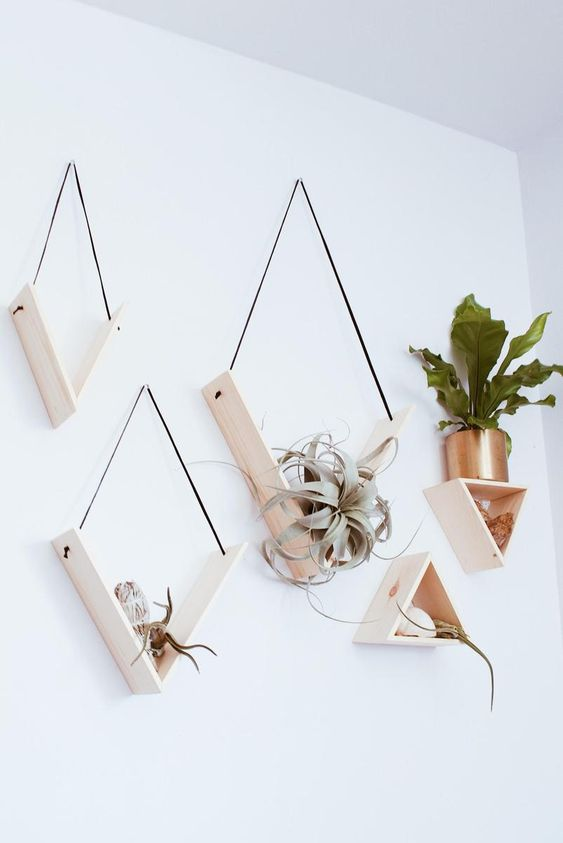creative minimalist shelves with sleek triangular shapes and air plants will be a perfect wall garden
