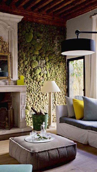 a living moss wall is a real touch of nature inside, and it's a huge trend right now and it looks very catchy