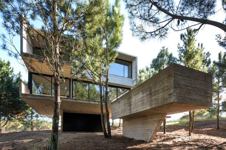 Minimalist House In The Trees That Defies Gravity
