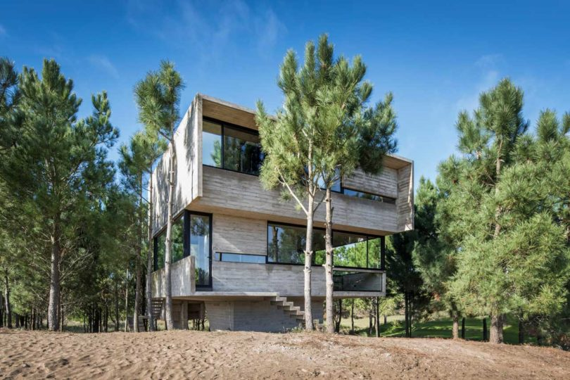 The house hovers in the pines and they were not injured while building this holiday dwelling