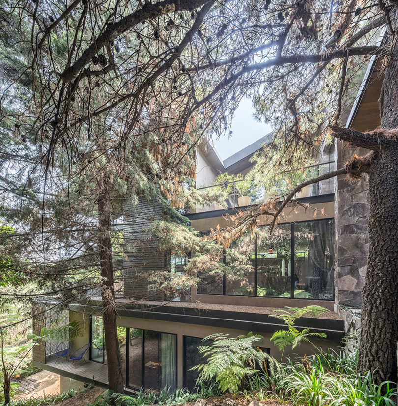 Los Helechos house is a cool contemporary house placed in the woods in Mexico