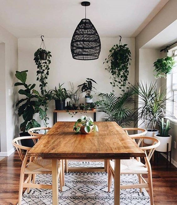 a boho dining room refreshed with lots of greenery in hanging and usual pots is a very cool idea