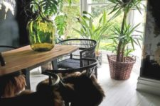 24 choose statement greenery in large pots to highlight the style of your dining room