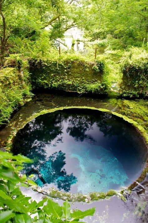 a small round pool made look all-natural, with rocks and moss and greenery around will make you feel like in wild nature