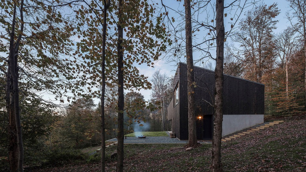The outside of the house is clad dark to merge with the surroundings, and there a terrace in front of it