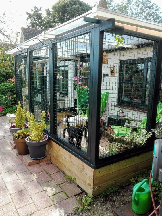 a stylish and simple cat enclosure with potted greenery and flowers and furniture for both humans and cats