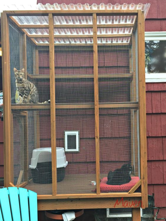 a cat patio for two, with shelves, beds and a toilet to spend time outdoors with comfort