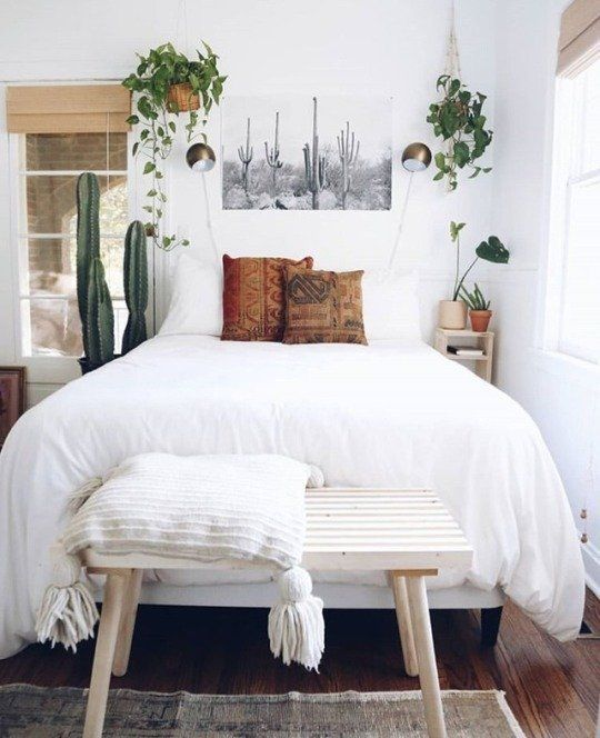 a small yet airy bedroom with potted cacti and greenery in pots attached to the wall for a fresh feel