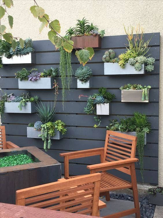 a black wooden plank wall with concrete and metal planters attached and lots of succulents and cacti
