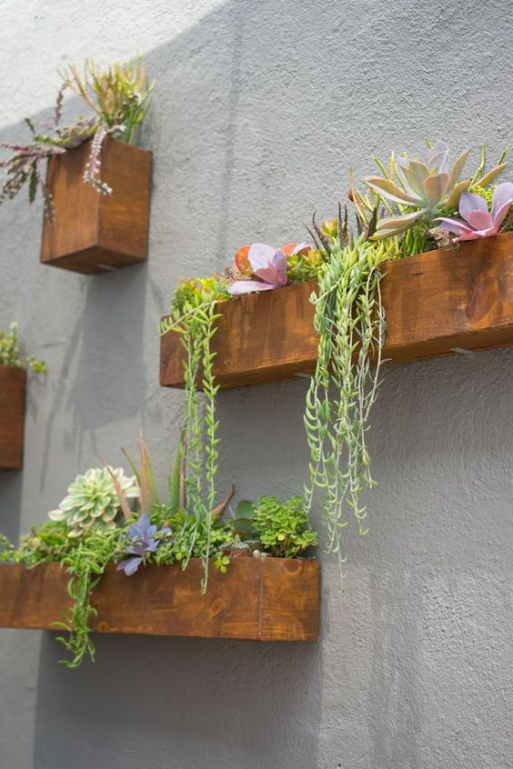 a concrete wall spruced up with rich stained planters with bright blooms, succulents and greenery