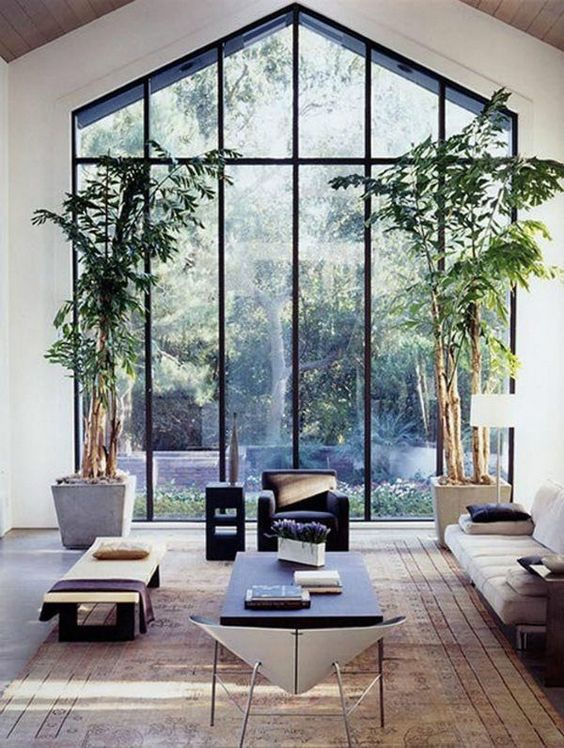 a biophilic living room with a double height glazed wall, potted trees and natural wood in its decor