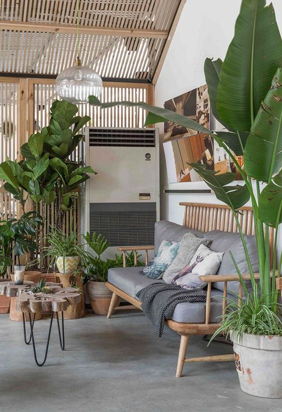 a natural tropical space with wooden furniture, potted plants and trees feels very biophilic and cool