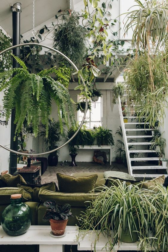 a super biophilic space with lots of greenery everywhere and natural fabrics for upholstery - this room looks like jungle