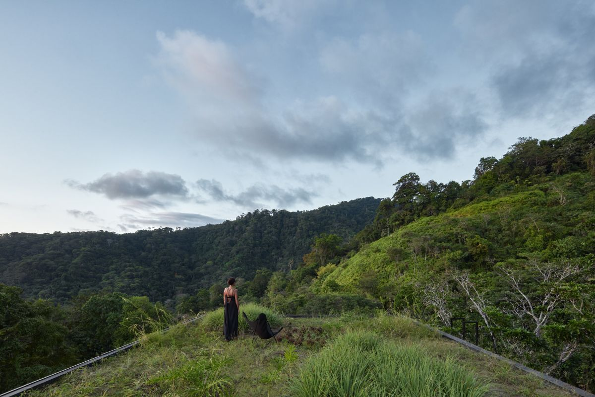 The house features a real green roof that blends with the landscape the best way possible