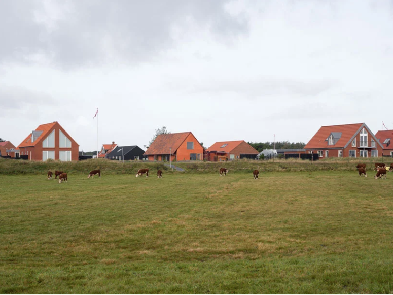 The house reinterprets traditional Danish longhouses and looks very natural in the neighborhood