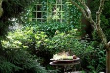 a small and lush garden with lots of greenery everywhere and shrubs of various kinds, with some metal vintage furniture
