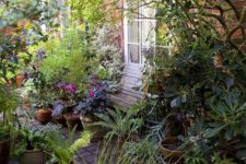 a small bright garden with a wooden bench, some potted greenery and flowers in pots plus some shrubs and trees