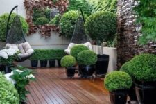 a small contemporary garden with lots of greenery in planters, some shrubs, greenery on the walls and suspended chairs