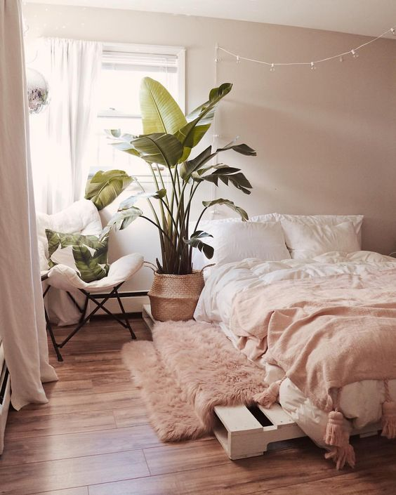 a welcoming contemporary bedroom with blush walls, blush and white bedding, a pink rug, a statement potted plant and tropical pillows
