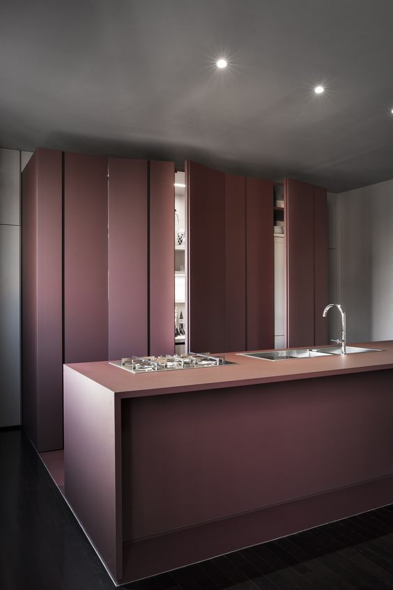 a minimalist purple kitchen all clad with panels to make it super sleek and almost invisible