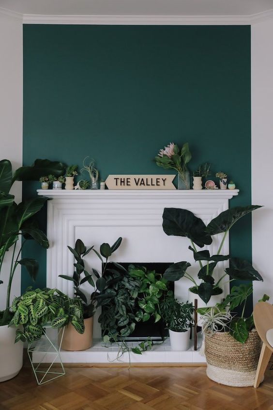 a white non-working fireplace with a chic surround and potted greenery and cacti inside it and on the mantel