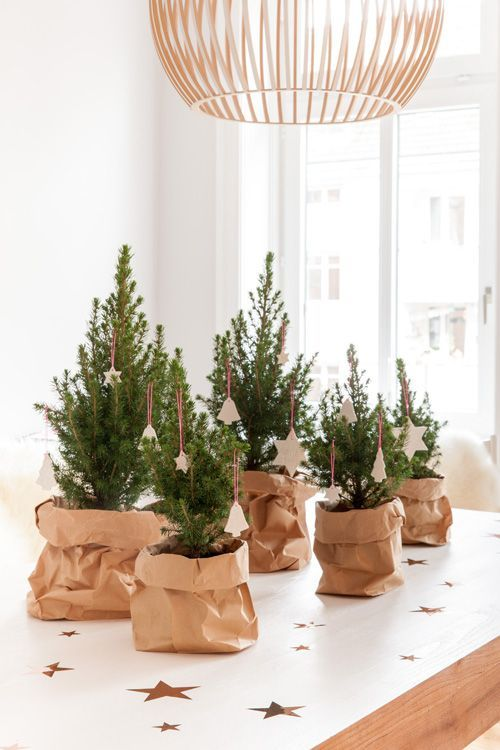 an arrangement of mini tabletop Christmas trees in paper sacks and with white clay ornaments are beautiful and simple