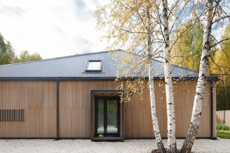 The house is clad with wood and features windows and skylights to get more light inside