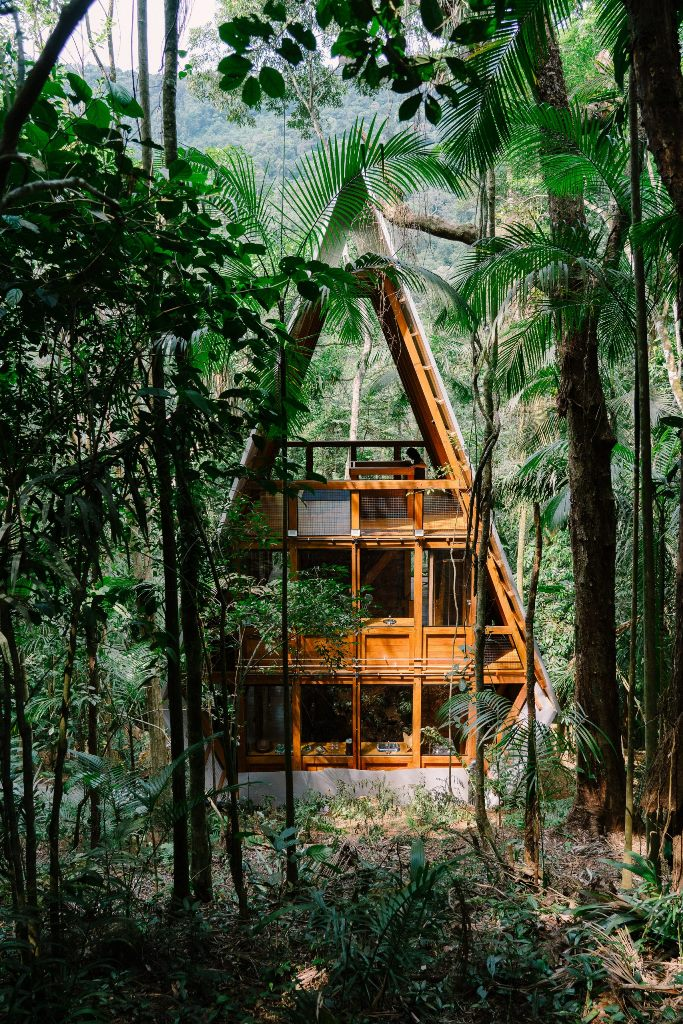Cabin On Stilts Deep Within A Brazilian Forest