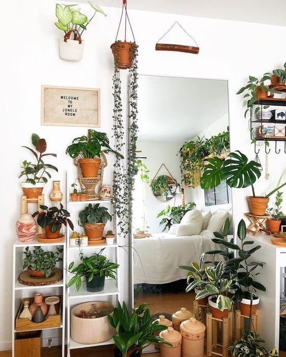 a plant-themed bedroom with potted greenery all over - on the shelves, suspended and even on the walls is wow