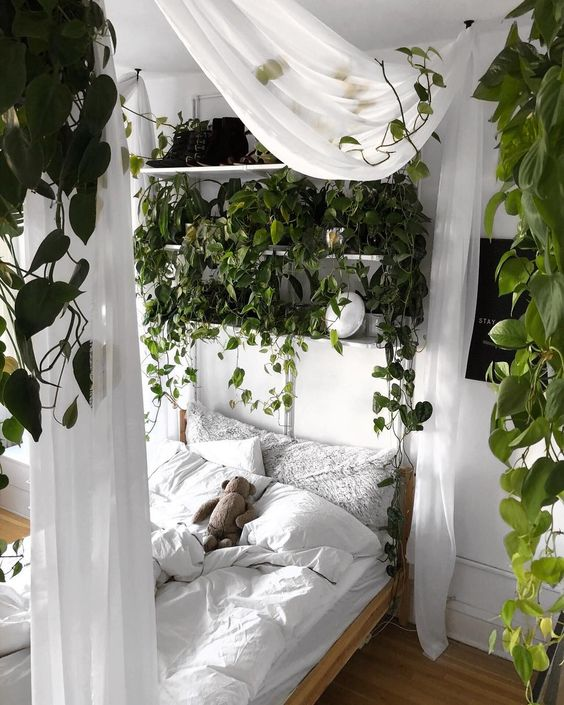 a real bedroom garden with lots of greeneyr hanging down will make you feel like outdoors at once