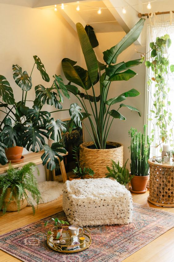 a stylish boho chic nook with potted plants and greenery, with cacti and boho rugs plus candles and an ottoman