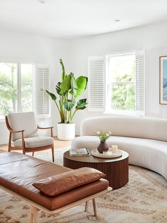 a chic neutral living room with a curved sofa, a leather daybed, a cool chair and a statement potted plant
