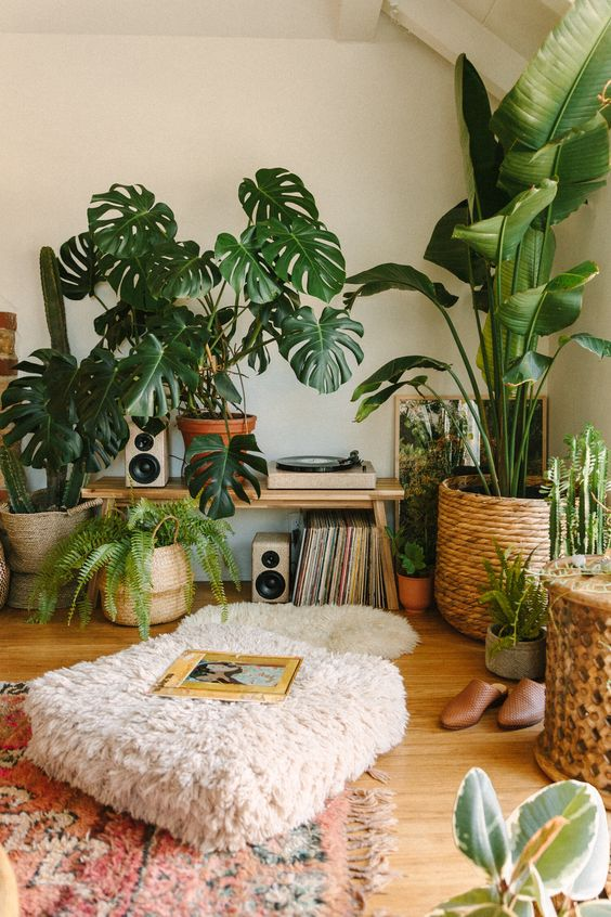 a neutral boho living room with lots of potted greenery feels very fresh and welcoming and looks cool
