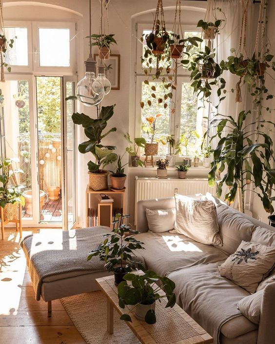 a neutral living room turned into an orangery - with lots of potted plants suspended and on the furniture
