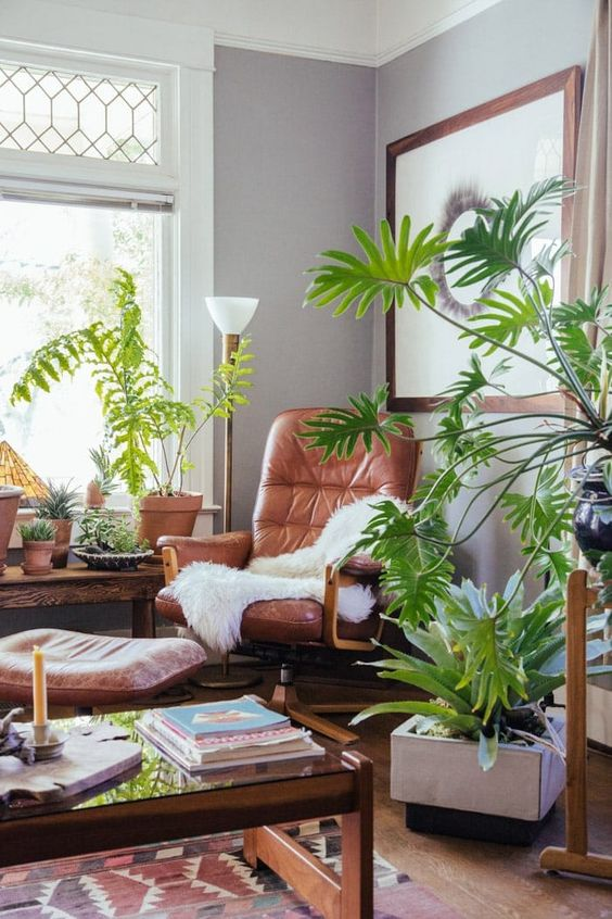 a stylish modern living room with leather and wood furniture, potted plants and printed textiles