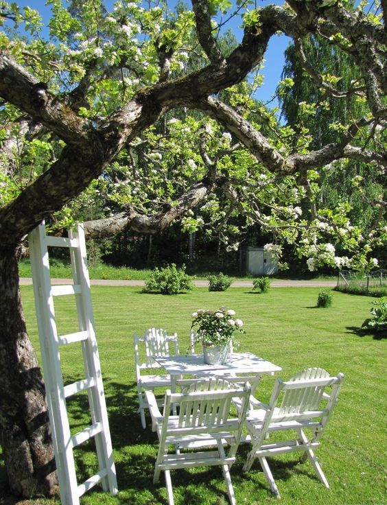 a cozy garden dining space under the tree, on a green lawn, with simple and cute white garden furniture and a ladder