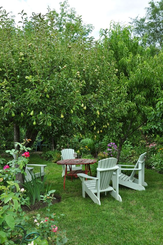 a small and cool dining eating area with a simple wooden table and chairs under pear trees and on grass is a cool idea