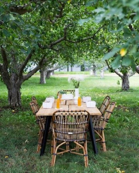 a small and cute dining space with a wooden table and rattan chairs under the trees is great for meals