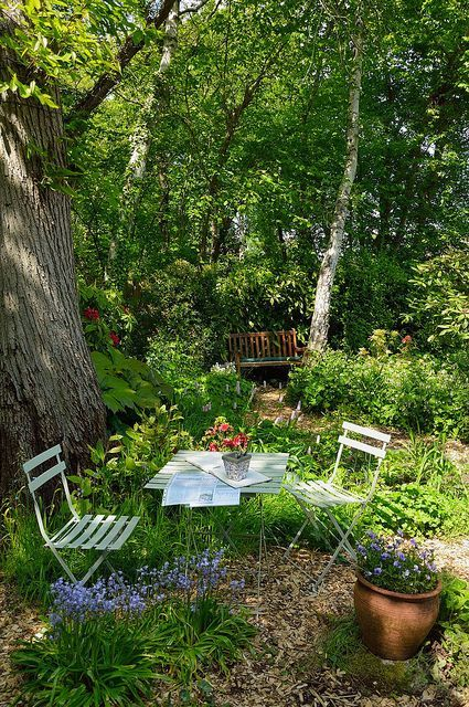 a small garden earing space with simple garden furniture, greenery and potted blooms organized under a tree
